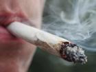 Woody Harrelson applies for marijuana dispensary