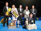 Meet the canine who won the National Dog Show