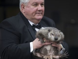 Punxsutawney Phil does not see shadow