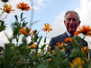 Prince Charles co-authors book on climate change