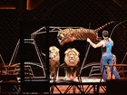 Ringling Bros. closes the curtain