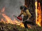 Trump: Worsening CA fires 'should never happen'
