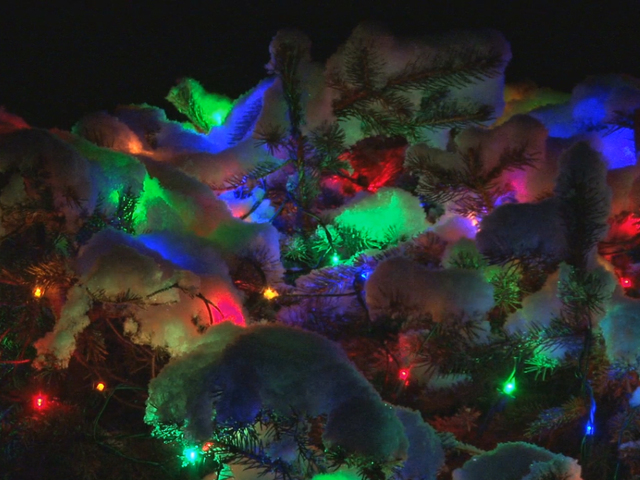 7 best places to see christmas lights in the usa 10newscom kgtv tv san diego - Best Christmas Lights In San Diego