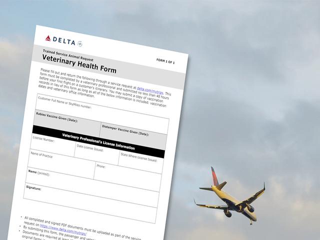 Delta cracking down on fake service animals