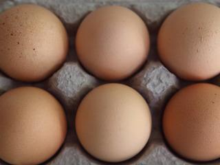 Egg recall: Salmonella cases in 7 states